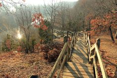 10. Castlewood State Park: Over 1,200 acres of views accessible by bike, foot, boat and even horseback.