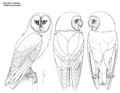 Chainsaw Carving Pattern free OWL