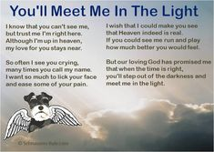"Can't wait to see all my fur-angels on the other side... what a reunion that will be!! -- Pet Loss Poem ""You'll Meet Me In The Light"""