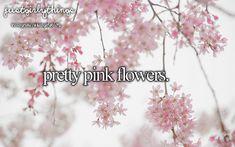 I love pretty pink flowers <3