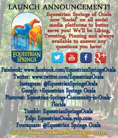 Today, #EquestrianSprings has gone #social! We are now social on all networks! You can begin to 'Like, pin, plus, follow, and tweet us' on all social media outlets! We will be more available to serve and answer your questions too. Go on, like and share this! Remember you can always visit us at www.EquestrianSprings.com or on Facebook: https://www.facebook.com/EquestrianSpringsOcala Have a terrific day! #horse #community #ocala