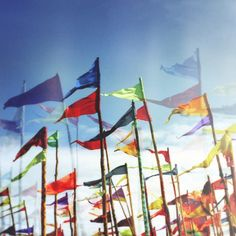 Flags at Glastonbury 2014