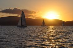 Twilight sailing races at Airlie Beach on the Whitsunday Coast