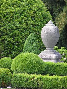 clipped topiary and classical garden urn on plinth Boxwood Garden, Topiary Garden, Garden Urns, Boxwood Hedge, Green Garden, Shade Garden, Amazing Gardens, Beautiful Gardens, Formal Garden Design