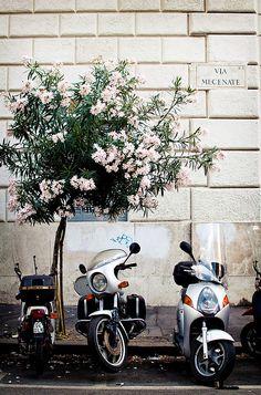 Rome - ASPEN CREEK TRAVEL - karen@aspencreektravel.com