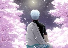 Gintama ~~ Romance of sakura and Gintoki by moonlight