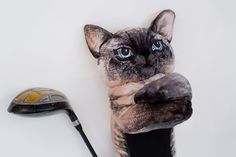 CAT Golf club head cover Custom pet portrait by Puppetsinabag Felt Puppets, Hand Puppets, Custom Puppets, Golf Headcovers, Craft Fur, Golf Pictures, Golf Club Head Covers, Puppet Show, Golf Gifts
