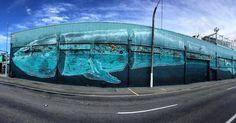 Blue Whale at 1:1 scale by @_dside for @pangeaseed и @seawalls_ in Napier New Zealand. Address: 9 Customs Quay Ahuriri Napier 4110 New Zealand. Photo by @brookmacdonald6. #dside #pangeaseed #seawalls #seawallsnz #newzealandstreetart #nzgraffiti #streetartnz #граффити_tschelovek #streetart #urbanart #graffiti #mural #стритарт #граффити #wallart #graffitiart #art #paint #painting #artederua #grafite #arteurbana #wall #artwork #graff #artist #graffiticulture #graffitiwall #streetart_daily…