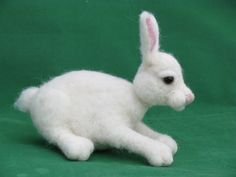 Pupunen Rabbit