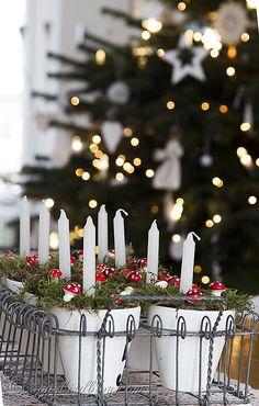 Song Bird Blog: Christmas tree bokeh candles decoration
