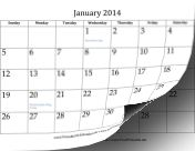 2014 Calendar (12 pages) calendar and other calendars