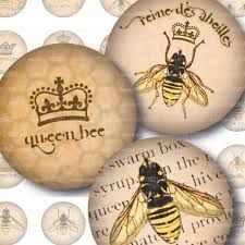 vintage bee illustration - Google Search