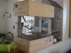 DIY bird cage made from wine boxes.