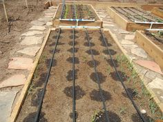 """vegetable garden irrigation systems 