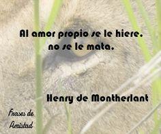 Frases filosoficas de amor de Henry de Montherlant
