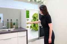 Future Kitchen Technology Fridge Design