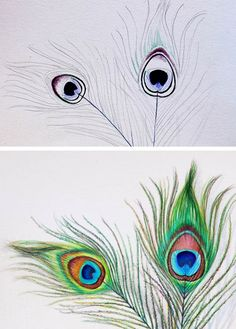 how to draw peacock feathers demo steps