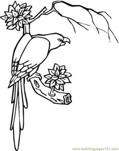 Free Coloring Pages Of Jungle Flowers