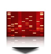 "I've wanted to turn my DNA into wall art for years. This site will also take your web site and generate a ""DNA"" chart."