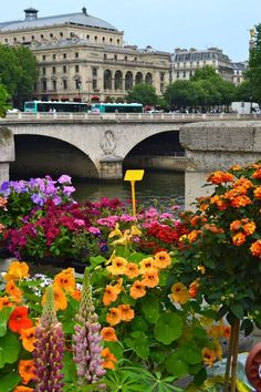 Pont Neuf Bridge, Paris My friend, Isabelle, lives in a beautiful apartment near this bridge. Such a lovely area of Paris! Pont Paris, Paris 3, I Love Paris, Paris Street, Paris Summer, The Places Youll Go, Places To See, Ville France, Belle Villa