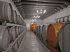 La Montina - Visita alle cantine in Franciacorta - Gite in Lombardia