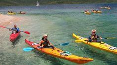 Salty Dog Sea Kayaking - Snorkel & Kayak Tours near McKay
