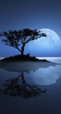 Phenomenal Reflection Pictures on Water blue moon tree Beautiful Moon, Beautiful World, Beautiful Places, Beautiful Pictures, Beautiful Scenery, Simply Beautiful, Inspiring Pictures, Beautiful Landscapes, Reflection Pictures