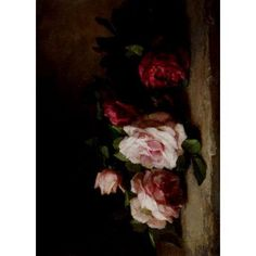 American Floral Painting Roses Canvas Art - Anna Eliza Hardy (18 x 24)