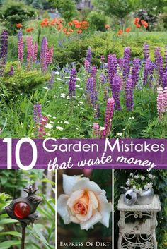 10 Garden MISTAKES that Waste Money (and what you can do instead) #ad