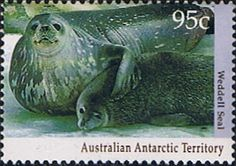 Australian Antarctic Territory 1992 Wildlife Weddell seal and pup Fine Mint SG 93 Scott L86 Other Australian Antarctic territory