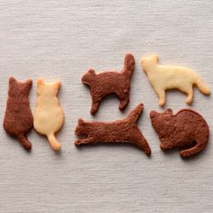 Kitteh biscuits knitting projects