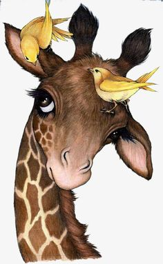 Robin James - Giraffe and birds illustration inspriation Giraffe Pictures, Cute Pictures, Images Of Giraffes, Bird Drawings, Animal Drawings, Drawing Cartoon Animals, Horse Drawings, Robin James, Art Fantaisiste