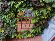 Living-wall-design-London Urban Garden Design, London Clubs, Garden Club, Wall Design, Terrace, Notting Hill, Outdoor Structures, Balcony, Patio