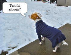 men's wool sweater into doggie tennis dress!