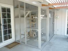 bulding an indoor cat enclosure Figure 3 & Constructed off living room window onto existing patio . Indoor Cat Enclosures, Outdoor Cat Enclosure, Reptile Enclosure, Cat Habitat, Cat Pen, Cat Cages, Cat Window, Cat Room, Outdoor Cats