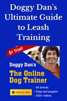 Doggy Dan's Ultimate Guide to Leash Training Lease training tips, lead training tips, dog pulling on leash, dog pulling on lead, dog leash pulling, puppy leash pulling, dog lead pulling, puppy lead pulling, leash training a dog, leash training a puppy, Dog Training, Puppy Training