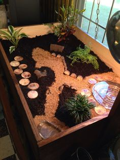 Indoor enclosure I made for our newest little family member Yurdle the Turtle, aka Columbus:)