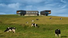 Headland House by Atelier Andy Carson features cantilevered rooms looking out to sea