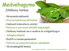 Forever Living Products, Jaba, Celery, Healthy Lifestyle, Vitamins, Spices, Food And Drink, Healthy Eating, Teak