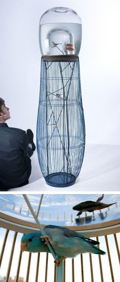 Birdcage / fishbowl  Submission to 'Xx+ Creative Gifts For Bird Lovers'