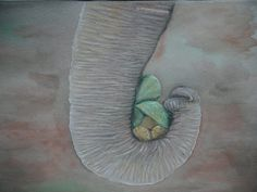 An elephant never forgets – Draw N Explore