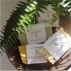 """Suds of Aromatic Plants -A Calgary based company started by Nicola Greene. Her vision for her products is """"Renewable, eco-friendly, carbon neutral and substainable"""" Carbon Neutral, Big Picture, Calgary, Spotlight, Eco Friendly, Cards Against Humanity, Business, Plants, Products"""