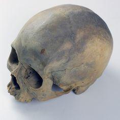 UB_Skull1_5.jpg