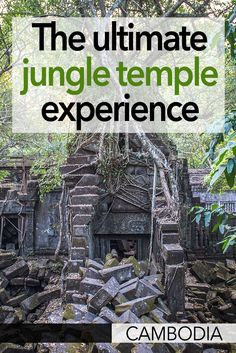 If you're looking for a jungle temple in Cambodia, I think Beng Mealea is the best Cambodian temple to visit. You can do a side trip from Siem Reap or Angkor Wat to Beng Mealea, to find a temple covered in jungle that makes you feel like a real explorer!