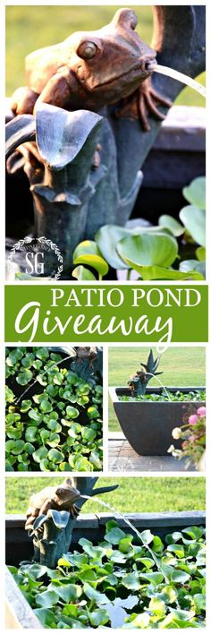AQUASCAPE PATIO POND Patio Pond Giveaway at StoneGable-stonegableblog.com