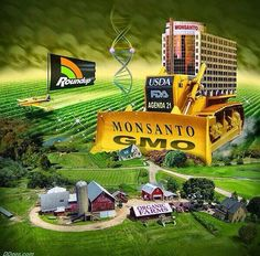FACEBOOK MARCH AGAINST MONSANTO - Google Search
