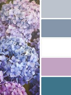 Asha-Maía Design Concepts | Interior Design & Home Styling. Changing your decor for spring is a great way to achieve a sense or renewal in your home. Read on to explore Spring color palettes and tips on how to use them in your space.