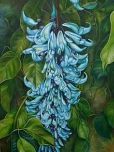 A flor de jade é uma espécie de trepadeira raríssima e muito bela com origem nas Filipinas pertencente a família das Leguminosas. Em tamanho pode atingir vinte metros, mas geralmente chega aos oito metros de comprimento (existe também a vermelha)