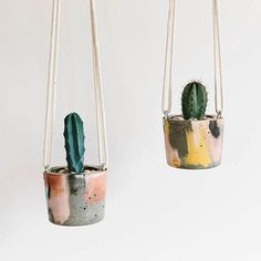 Indoor Plant Photography: Instagram accounts to follow -  @cactusmagazine