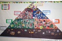 Science, Health, Food Pyramid: Let's Build a Pyramid Bulletin Board